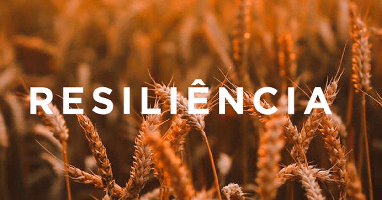 Você está sendo resiliente ou apenas suportando?